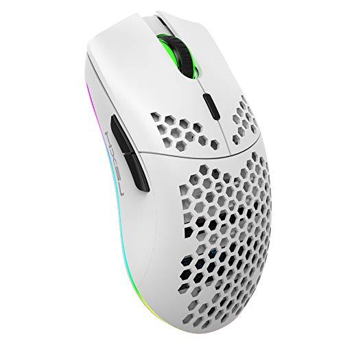 Mouse da Gioco a Nido D'ape Wireless Ricaricabile,Leggero con 3200 DPI,Retroilluminato Arcobaleno RGB-Bianca