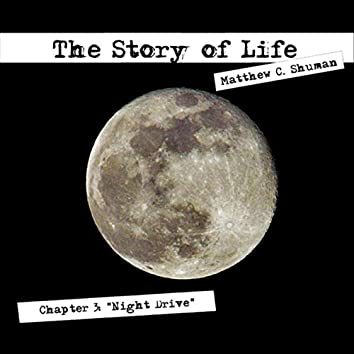 Chapter 3: Night Drive