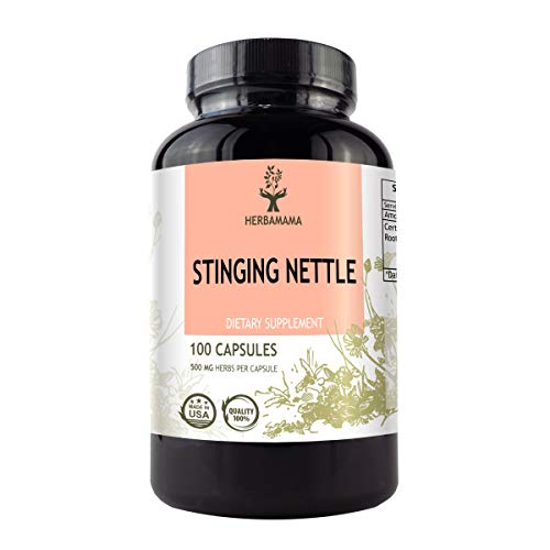 Stinging Nettle Root 100 Capsules 500 mg | Filled with Organic Stinging Nettle Root | Non-GMO