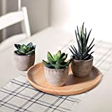 OUNONA 3 Stücke Künstliche Sukkulenten Pflanzen mit Töpfen Tischdeko Haus Balkon Büro Deko - 2
