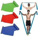 Bidetu Bandas Elasticas Musculacion, 3 Piezas Bandas De Resistencia Para El Desarrollo Muscular, Crossfit, Yoga, Pilates Para Hombres y Mujeres, Bandas De Entrenamiento De Fuerza