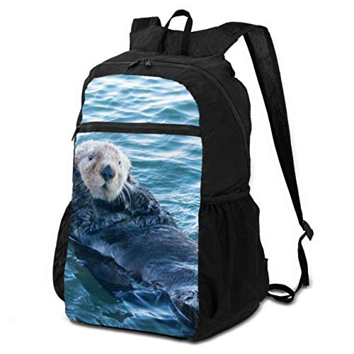 JOCHUAN Foldable Backpack for Boys California Sea Otter in Morro Bay on The Central C Daypack for Women Travel Traveling Daypack for Women Lightweight Waterproof for Men & Womentravel Camping Outdoor