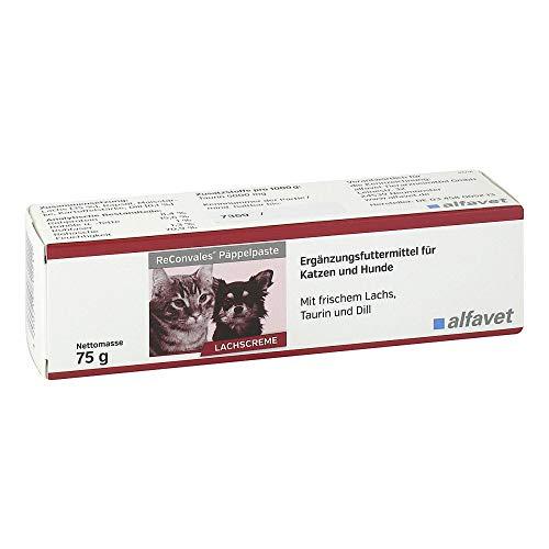 RECONVALES Päppelpaste f.Hunde/Katzen 75 g