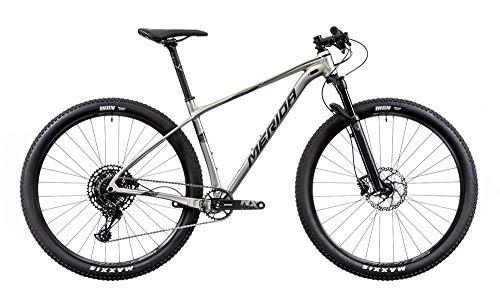 Merida Big.Nine NX-Edition - Bicicleta de montaña, titanio/plata, 2019 RH 53 cm/29 pulgadas
