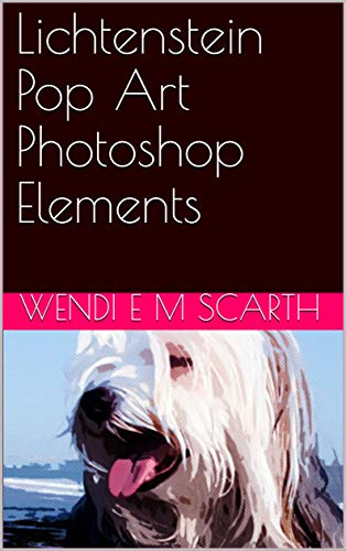 Lichtenstein Pop Art Photoshop Elements (Photoshop Elements Made Easy Book 151) (English Edition)