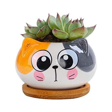 Details about  /Handmade Mini Cute Cartoon Pots Ceramic Succulent Pots with Drainage Hole-5 Pack