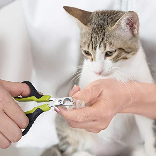 Pecute Professionelle Katze Nagelknipser Nagelschere Krallenschere Scherschneider für Katze Welpen Kaninchen und andere kleine Tiere - 4