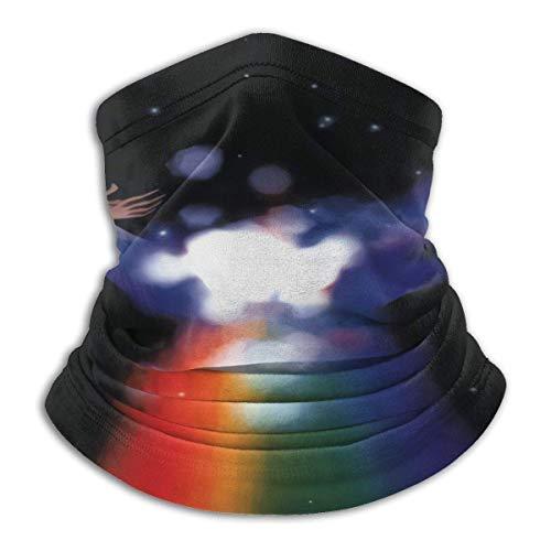 DearLord Protector solar multifuncional Van Morrison hermosa visión cálida bufanda para el cuello, bufanda impresa, resistente al viento deportes Ma-sk, calentador de cuello de microfibra