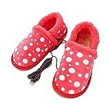 DYHQQ USB elektrisch beheizte Hausschuhe - beheizte Winter warme Schuhe für kaltes Wetter, Bequeme weiche plüschhausschuhe, um die füße warm zu halten, ideal für männer und Frauen,A,40~41