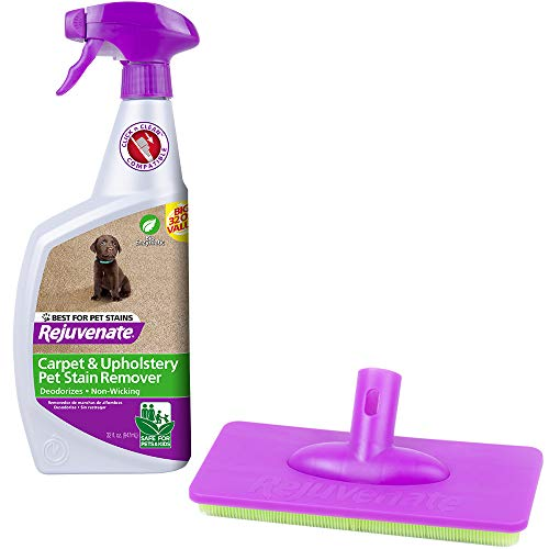 Product Image of the Rejuvenate Click N Clean
