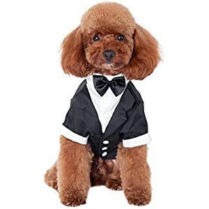 Kuoser Dog Shirt Puppy Pet Small Dog Clothes, Stylish Suit Bow Tie Costume, Wedding Shirt Formal Tuxedo with Black Tie, Dog Prince Wedding Bow Tie Suit