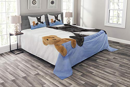 Ambesonne Animal Bedspread, French Bulldog Sleeping with Teddy Bear in Cozy Bed Best Friends Fun Dreams Image, Decorative Quilted 3 Piece Coverlet Set with 2 Pillow Shams, King Size, Blue Brown