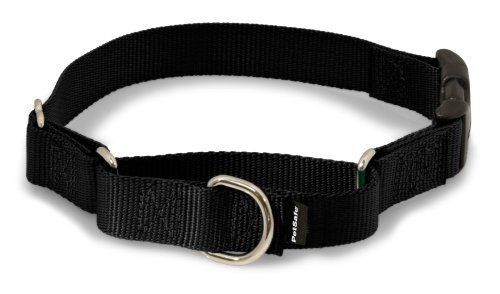 PetSafe Martingale Collar with Quick Snap For Pugs