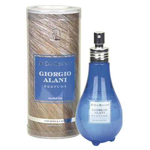 Iv San Bernard, Parfum Giorgio Alani sans alcool