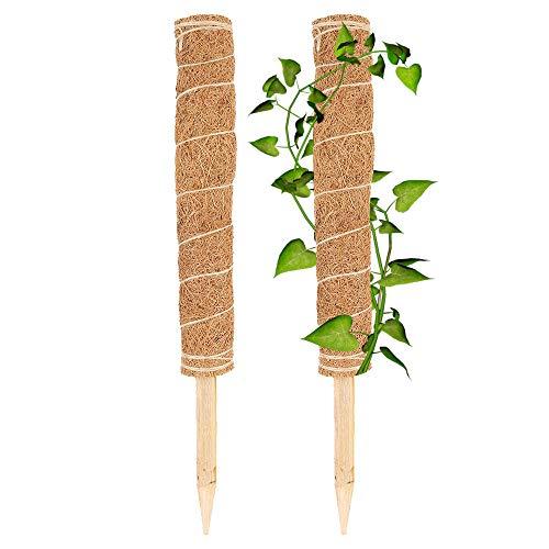 2 Stück 45cm Pflanzstab Kokos Blumenstab Kokosstab Rankstab Natürlicher Kokosfaser Stützpfahl Kokos Stangen Totem Pole Pflanzenstütze Totempfahl Kokos Für Pflanzenunterstützung Klettern Zimmerpflanzen