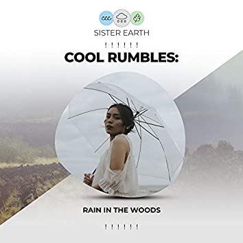 ! ! ! ! ! !  Cool Rumbles: Rain in the Woods  ! ! ! ! ! !