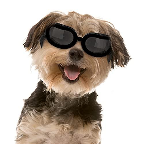 Pawaboo Hundebrille, Hundeschutz Brille mit Einstellbarem Band, wasserdichte Winddichte Schneesichere Kühle Modische Hund Sonnenbrille für Kleine Hunde und Katzen, Schwarz