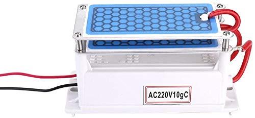 Ozonizador, generador de ozono Purificador de ozono casero Máquina de ozono 10 g / h Ozonizador de agua dual integrado para fábrica de productos químicos-Tipo1