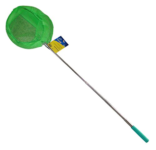 Idena 40078 - Mini Kescher aus Metall mit ausziehbarer Teleskopstange, von ca. 37 cm bis ca. 72 cm, für Kinder oder zum Angeln, grün