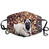 Mundschutz Mops Hund Baumwolle Waschbare Abdeckung Maske Schule Mund Maske Täglicher Druck Staubmaske Winter Wärme Mund Abdeckung Einkaufen Buntes Skifahren
