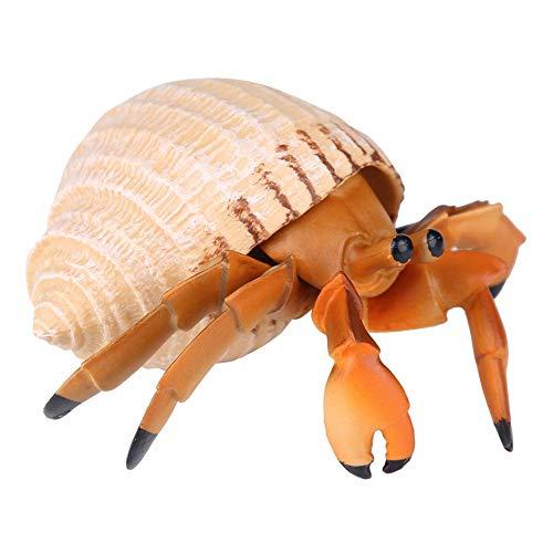 1 Unid Modelo de Simulación de Cangrejo Ermitaño Juguete Realista Juguetes de Animales de Regalo Educativo para Niños Juguetes Modelo de Aprendizaje Infantil