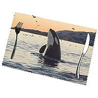 サメ ランチョンマット 食卓マット プレースマット おしゃれ 防汚 滑り止め 撥水 断熱 飾り お手入れ簡単 45 X 30cm 6枚セット
