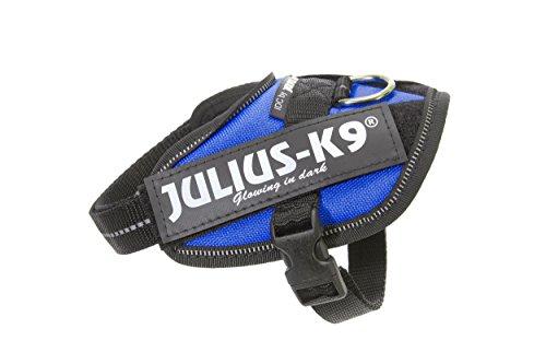 Julius-K9, 16IDC-B-B2, IDC Powerharness, dog harness, Size: Baby 2, Blue