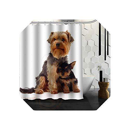 Cool-House Lavendel Duschvorhang  Yorkshire Terrier Hunde Duschvorhang Badvorhang Wasserdichter Stoff für Badezimmer MEHR GRÖSSE 165X180cm, 180X200cm-1-66x72inch