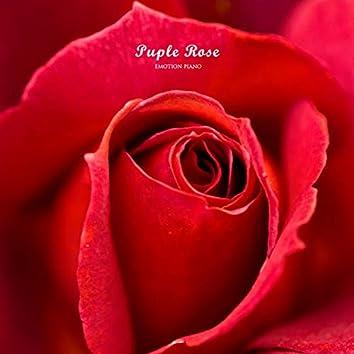 Puple Rose