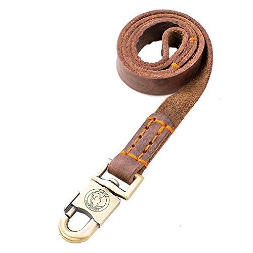 Rantow Laisse de Dressage pour Chiens Moyens ou Grands Chiens 1 Pouce Large et 90 cm, 120 cm et 150 cm (90cm)