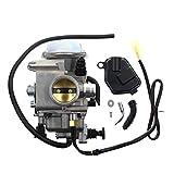 bibididi Carburador Honde Foreman 450 TR-X 450 Tr-X450Es Tr-X450Fe Tr-X450Fm Tr-X450S, cortacésped con Rodillo de Rayas