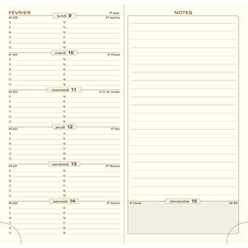 Exacompta - 17840E - Recharge Millésimées à la semaine - pour Agenda Espace 17 - 1 semaine / page - 9 cm x 17,5 cm - Janvier 2022 à Décembre 2022 - Papier ivoire