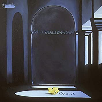 Strauss: Metamorphosen