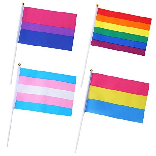 Sunshane 60 Stücke Transgender Trans Pride Flaggen Mini Kleine LGBT Regenbogen Stick Flaggen für Transgender Pride Parade Festival Party Dekorationen