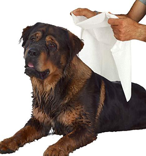 5 wegwerp huisdier handdoeken in absorberende viscose Cm 80 x 100 medische Sud