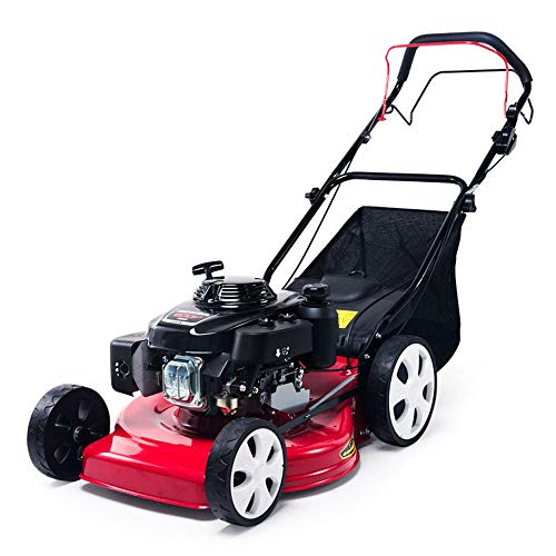 ZTBXQ Diseño de Muebles Gasolina Honda Cortacésped eléctrico Empuje Manual Cortadora de césped autopropulsada Segadora Empuje Cortadora de césped
