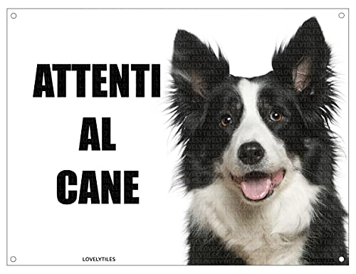 BORDER COLLIE attenti al cane mod 2 TARGA cartello IN METALLO (15X20)