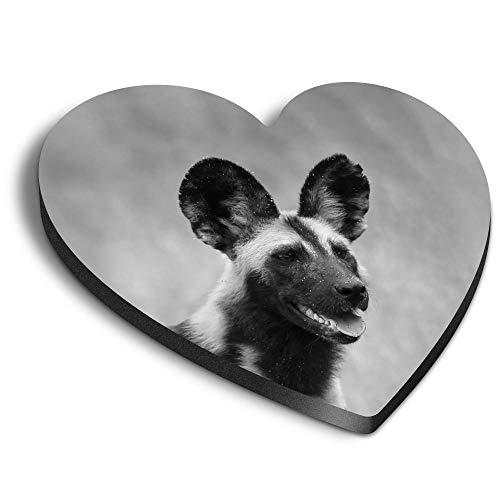 Destination Vinyl ltd Corazones MDF imanes – BW – África perro salvaje africano África animal para oficina, armario y pizarra blanca, pegatinas magnéticas 37176