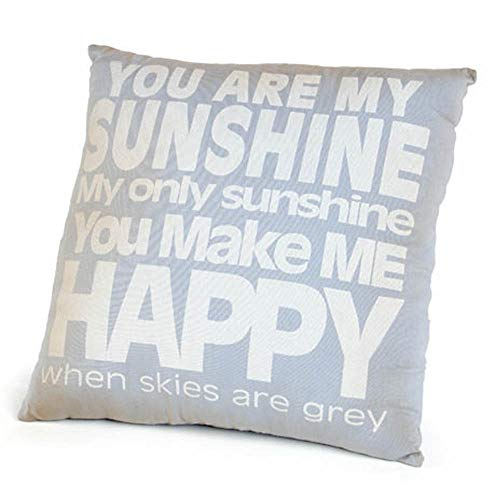 Ohio Wholesale 'You are My Sunshine' Accent Pillow