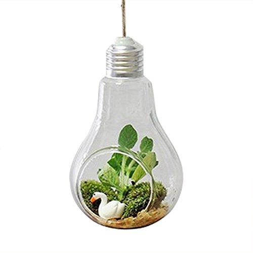 Gespout Mini Vase Verre Transparent Suspendu Decoration Design Salon Blanc Rond