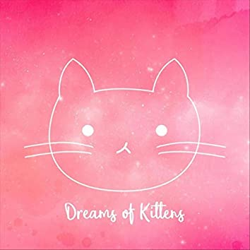 Dreams of Kittens