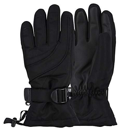 Womens Warm Winter Waterproof Thinsulate Snow Gloves (Black, Medium/Large)