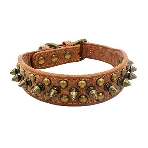 Newtensina Retro Bronze Nieten Hundehalsband Hündchen Halsband mit Nieten für Klein Hunde Mittel Hunde - Brown - XS