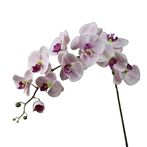 Flores Artificiales, phalaenopsis Artificial, Ramos de Flores Artificiales de orquídeas, decoración del hogar del jardín del Banquete de Boda de la orquídea (5 Piezas)
