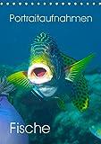 Portraitaufnahmen - Fische (Tischkalender 2020 DIN A5 hoch)