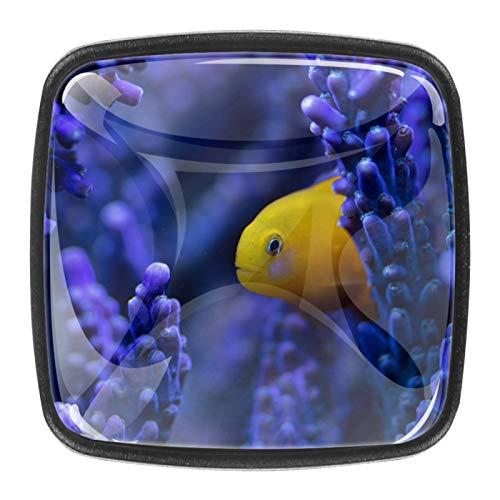 Juego de 4 pomos de cristal para gabinete de 1,18 pulgadas, tiradores de cristal para cocina, gabinete de baño, aparador y armario, algas y peces morados