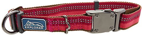 Coastal Pet Products DCP36923BRY K9 Explorer 1-Inch Dog Collar, Large, Berry