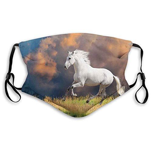 YYTT8 Gesichtsschutz Mundschutz Nasenschutz Wiederverwendbar Waschbar Gesichts Schals Andalusisches Pferd mit einem Wolken-starken Wunschfoto