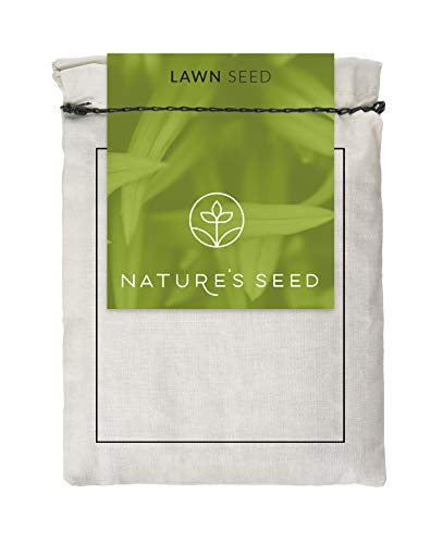 Microclover Seed (500 SQFT)