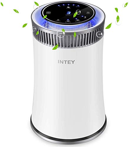 INTEY Purificador de aire Alergia con Filtros HEPA, Purificador Escritorio con luz LED de Noche y Función de 5 Temporizadores, Para alérgenos de Mascotas, Asmáticos